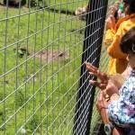 Farm Visit June '16